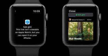 watchOS 5 webkit Apple Watch