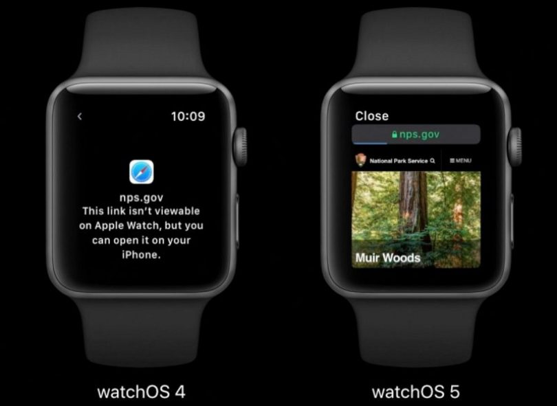 watchOS 5 webkit Apple Watch